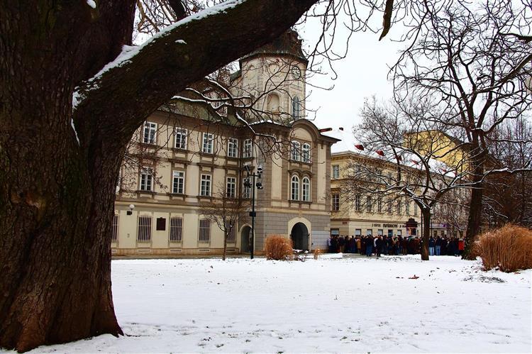 Masopust v Plzni 2013